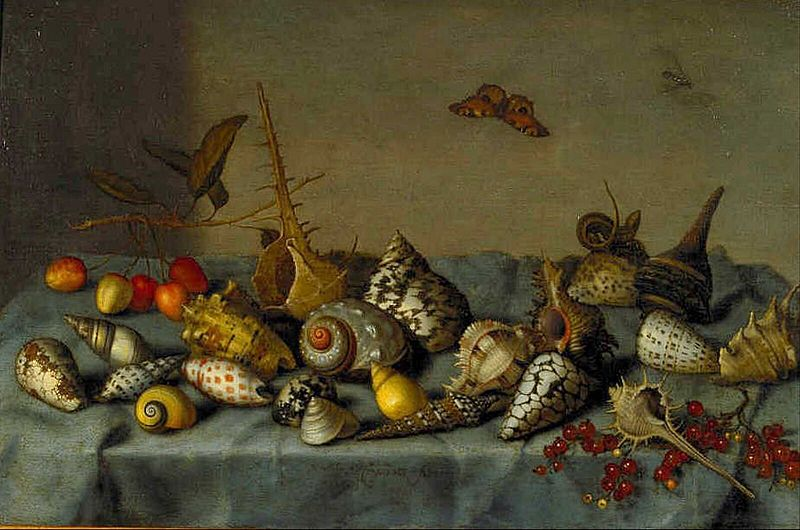 Bartholomeus van der Ast, Still Life with Shells, ca. 1640, oil on panel