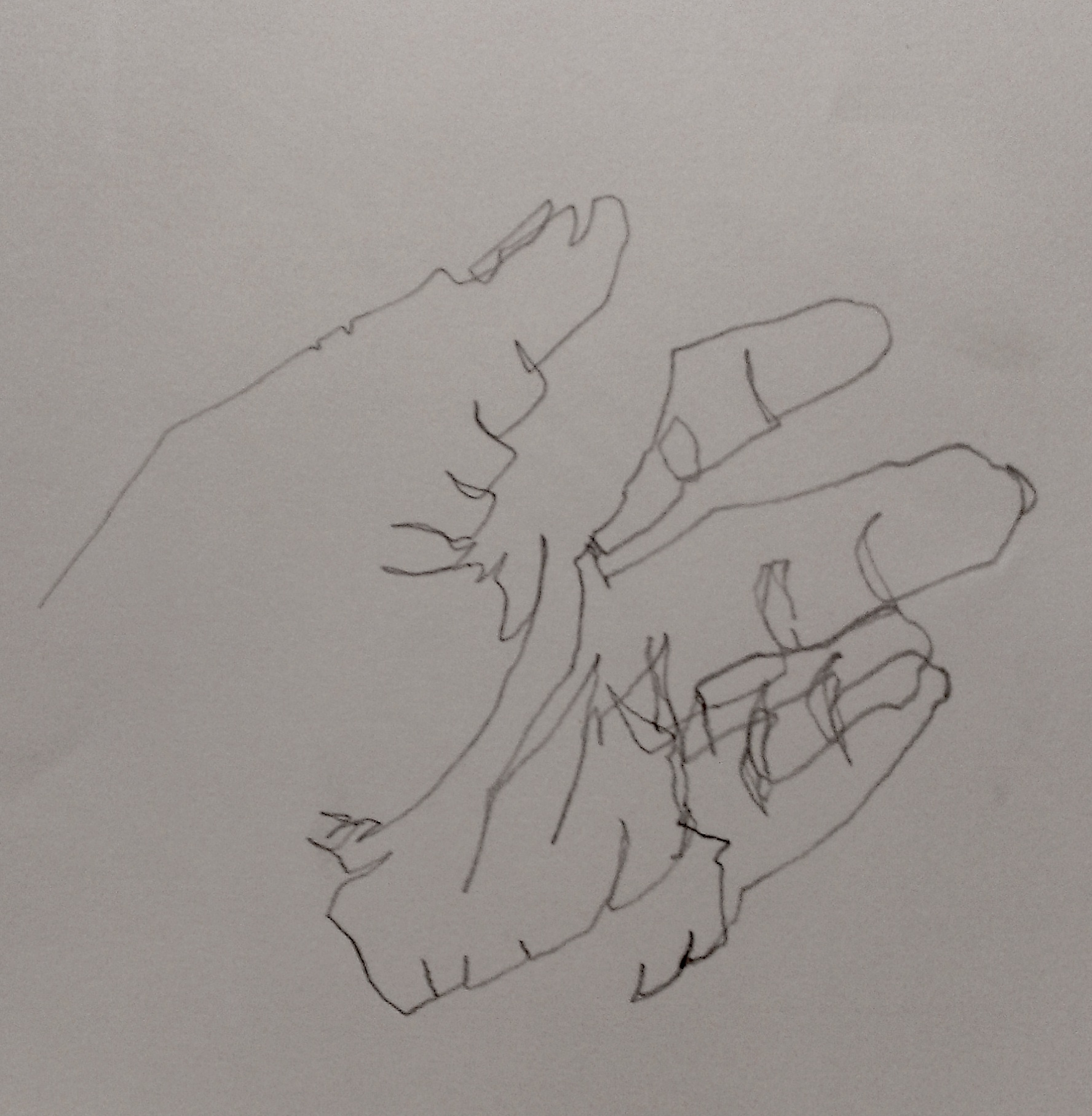 Blind Contour Line Drawing Hand : Learning to trust your eyes beginner s school