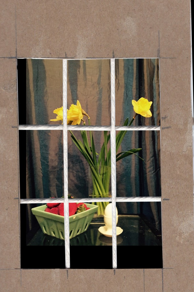 Daffodil-SetUp-1