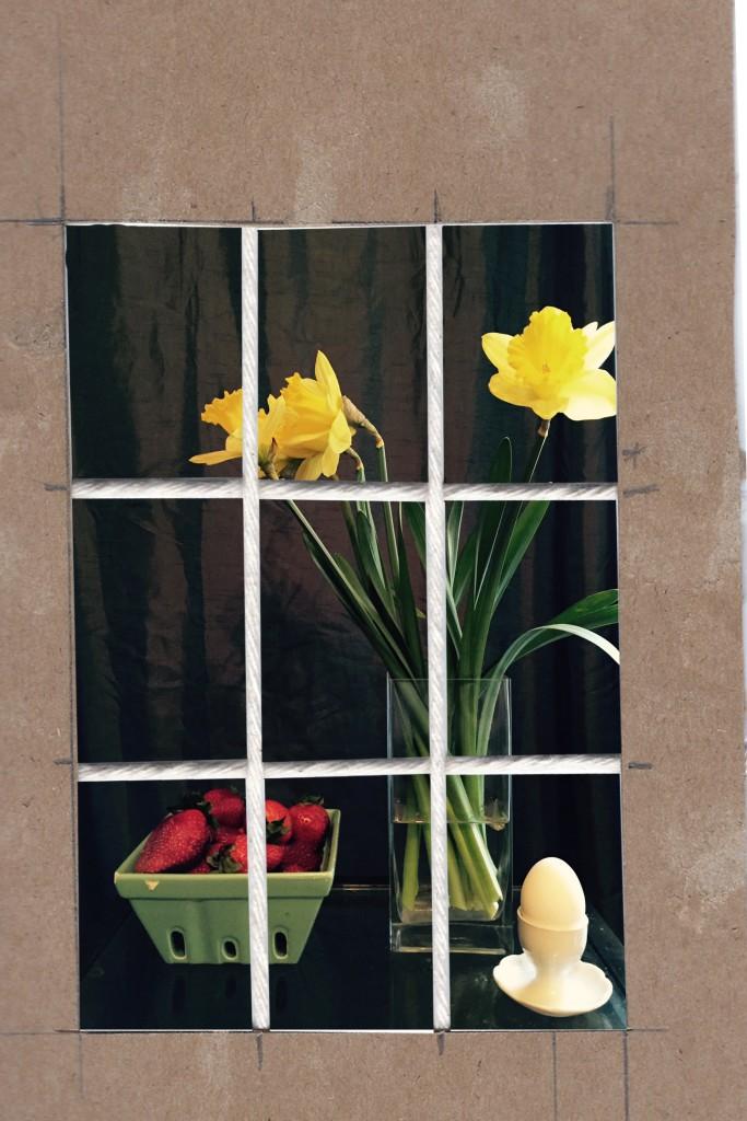 Daffodil-SetUp-2