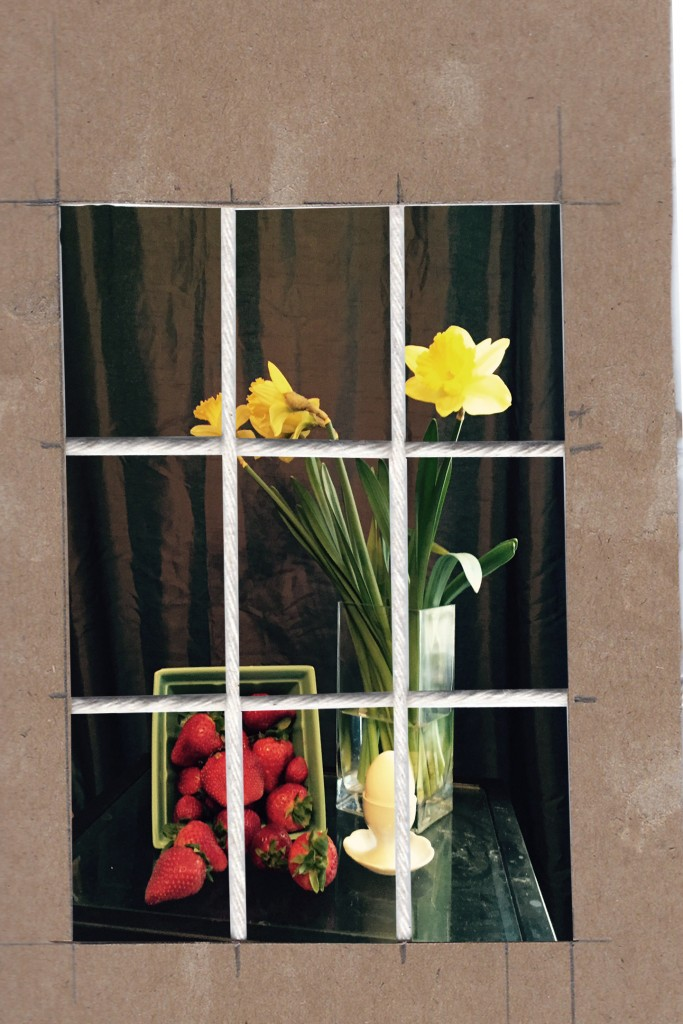 Daffodil-SetUp-3
