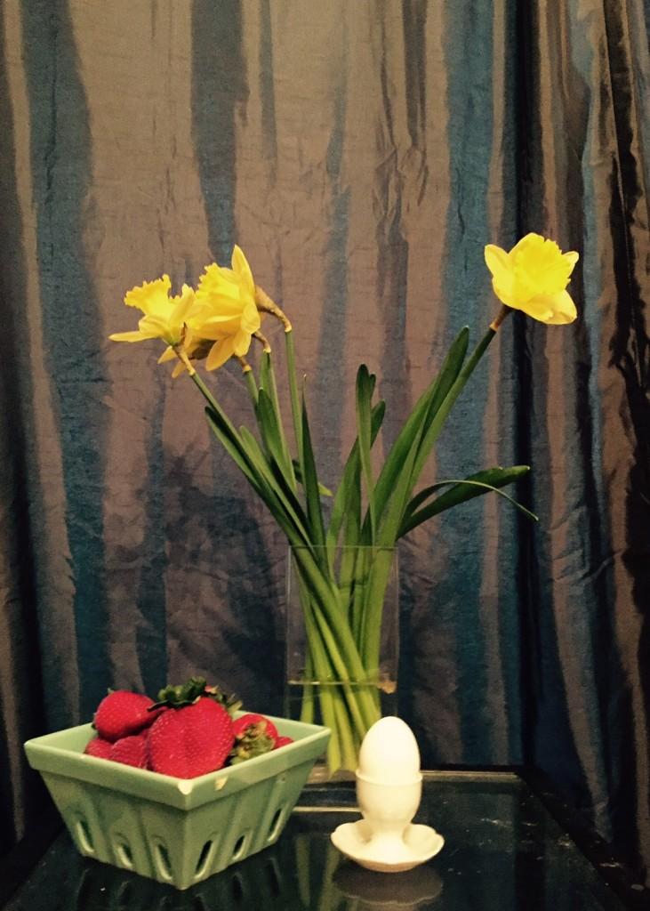 daffodil-SL_1