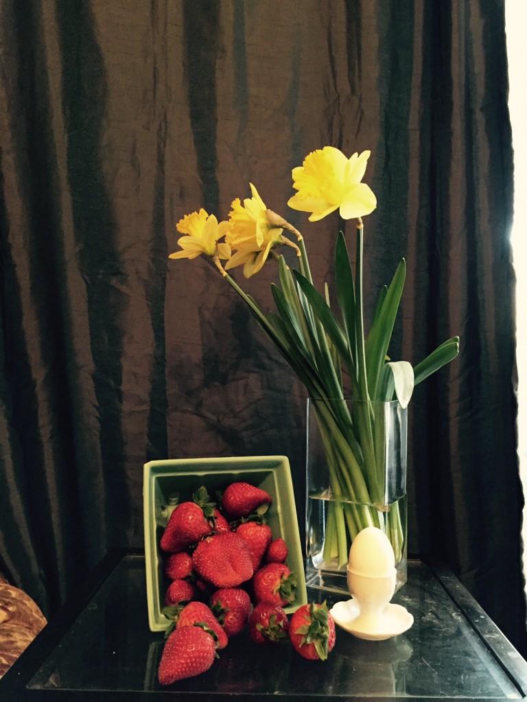 daffodil still life 3