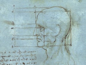 788px-Proportions_of_the_Head