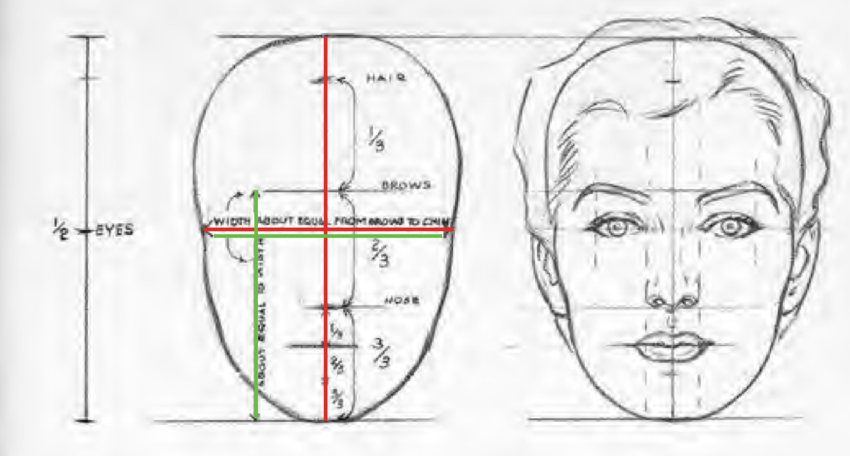 Facial proportions and sculpting a face beginner 39 s school for Size and proportion